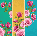 Pink rose frames. Vector set of floral vertical banners.