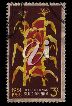 Royalty Free Photo of a Stamp