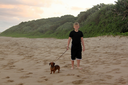Picture of a Boy Walking His Dogs on a Beach