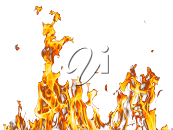 abstract background. flame fire on a white background
