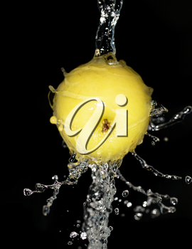 Apple in spray of water on black background