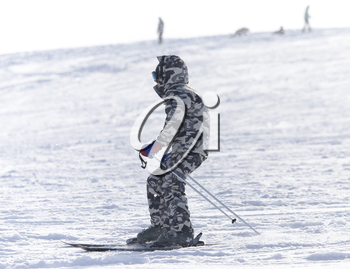 people skiing in the winter