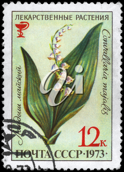 USSR - CIRCA 1973: A Stamp printed in USSR shows the Lily of the Valley, with the description Convallaria majalis, from the series Medicinal Plants, circa 1973