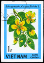 VIETNAM - CIRCA 1984: A Stamp printed in VIETNAM shows image of a Cassia fistula, from the series