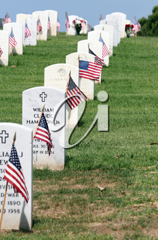 Royalty Free Photo of Gravestones At A National Cemetary