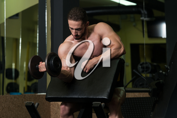 Young Man Working Out Biceps - Dumbbell Concentration Curls