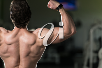 Young Man Standing Strong In The Gym And Flexing Rear Double Biceps Pose - Muscular Athletic Bodybuilder Fitness Model Posing Exercises