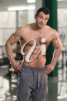 Hairy Handsome Young Man Standing Strong In The Gym And Flexing Muscles - Muscular Athletic Bodybuilder Fitness Model Posing After Exercises