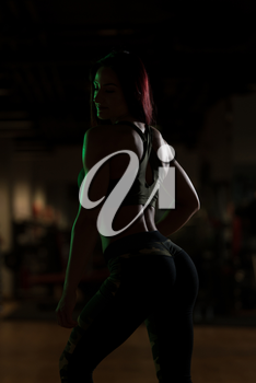 Silhouette Attractive Young Woman Standing Strong In The Gym And Flexing Muscles - Beautiful Athletic Fitness Model Posing After Exercises