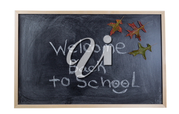 Chalkboard with text stating welcome back to school with autumn leaves. Isolated on white background.
