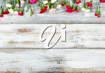 Colorful carnations and gift forming top border on white weathered wooden boards