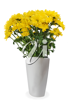 colorful autumn yellow flower bouquet arrangement centerpiece in vase isolated on white background