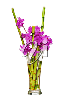 Colorful flower bouquet from purple rhododendron flowers on branch and green bamboo arrangement centerpiece in glass vase isolated on white background. Closeup.
