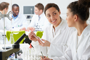 Group Of Technicians Working In Laboratory