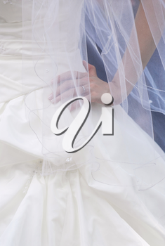 Bride wearing a white wedding dress and a veil