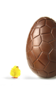 Royalty Free Photo of a Chocolate Egg and Baby Chick