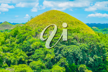 Famous Chocolate Hills natural landmark, Bohol island, Philippines