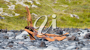 Remains of a boat wreck at the black beach on Iceland Snaefellsnes Dritvik - Selective focus