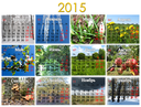 calendar for 2015 year on the background of seasonal pictures