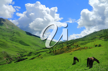 Summer scenery of Caucasus green mountains