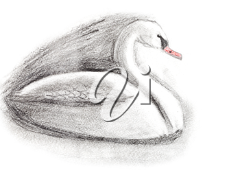 children drawing - sketch of white swan
