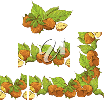 Rectangular frame ornament with highly detailed hand drawn hazelnuts isolated on white background. Pattern endless fragments.