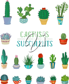 Various cacti in flowerpots and cups. Cartoon icons isolated on white background.