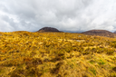 Gorgeous view of Diamond Hill in Connemara National Park
