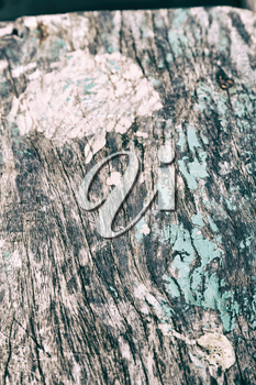 abstract texture of a piece of painted  wood like background concept