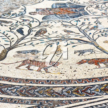 roof mosaic in the old city morocco africa and history travel