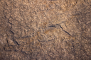High resolution of surface natural stone