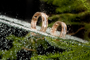 Two engagement golden rings in the water with air bubbles