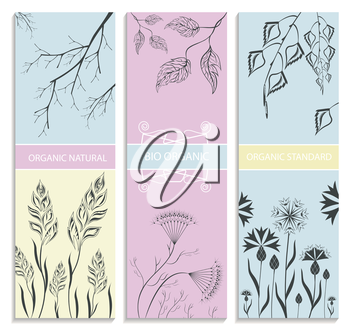 Organic cosmetic. Botanical floral banner collection. Vector Illustration