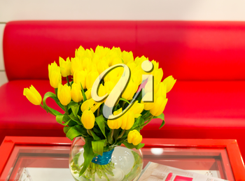 Vase of yellow tulips in modern  living room, closeup