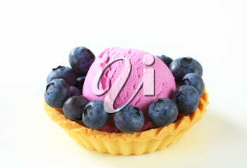 Scoop of fruit ice cream with fresh blueberries in a tart shell