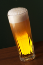 Freshly Poured Beer in a Tall Glass