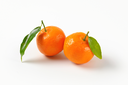 two tangerines with leaves on white background