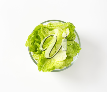 Fresh little gem lettuce leaves in glass bowl