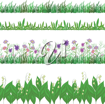 Set seamless of flowers and green grass, isolated on white background. Vector