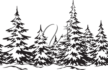 Christmas Holiday Seamless Horizontal Background, Winter Landscape, Fir Trees with Snow, Black Silhouettes Isolated on White Background. Vector