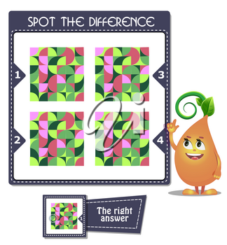 visual game for children and adults. Task game Spot the difference mosaic