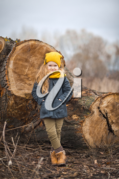 Autumn portrait of a little girl on the background of the trunk of a fallen tree.