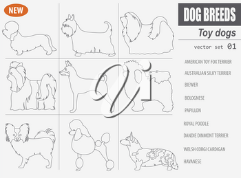 Miniature toy dog breeds, set icon isolated on white . Outline, linear version.  Vector illustration