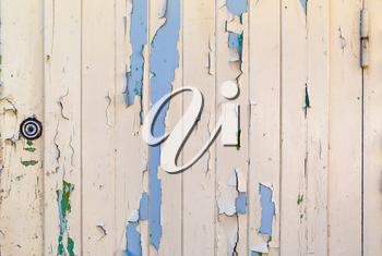 Old wooden door with peeling paint texture. Vintage rustic weathered dyed wooden planks background.