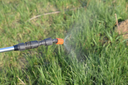 Spraying herbicide from the nozzle of the sprayer manual. Devices for processing plants in the garden.