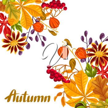 Card with autumn leaves and plants. Design for advertising booklets, banners, flayers, cards.