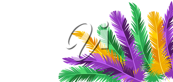 Card with feathers in Mardi Gras colors. Carnival background for traditional holiday or festival.