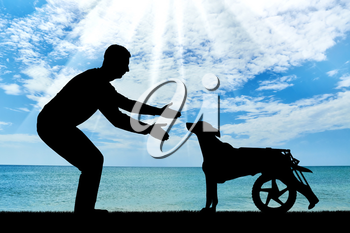 Man outdoors by the sea is calling for a paralyzed dog in a wheelchair. The concept of a dog in a wheelchair