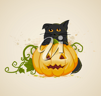 Halloween vector background with pumpkin and cat