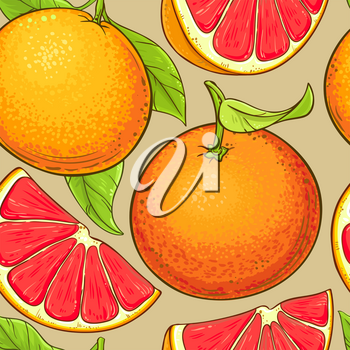 grapefruit fruits vector pattern on color backgrond